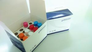 GenoAmpRT-PCR Dengue