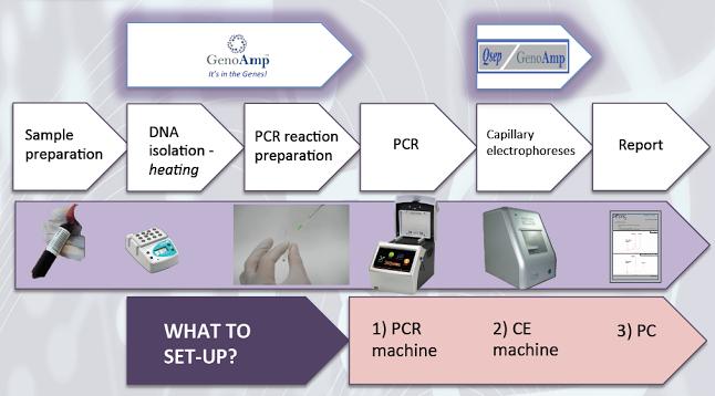 QSep End Process